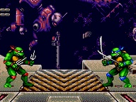 Teenage Mutant Turtle Ninja Tournament Fighters